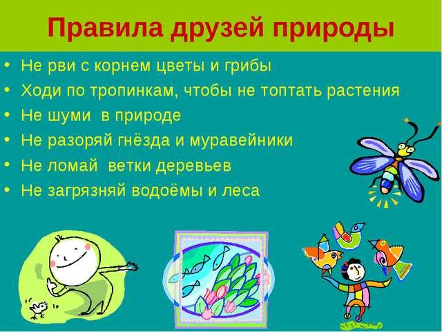 Правила друзей природы Не рви с корнем цветы и грибы Ходи по тропинкам, чтобы...