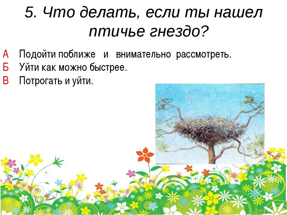 5. Что делать, если ты нашел птичье гнездо? А Подойти поближе и внимательно р...