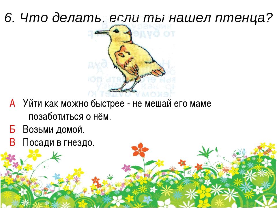 6. Что делать, если ты нашел птенца? А Уйти как можно быстрее - не мешай его...