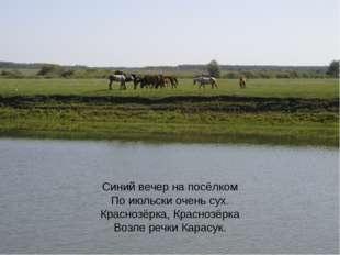 Синий вечер на посёлком По июльски очень сух. Краснозёрка, Краснозёрка Возле