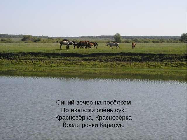 Синий вечер на посёлком По июльски очень сух. Краснозёрка, Краснозёрка Возле...