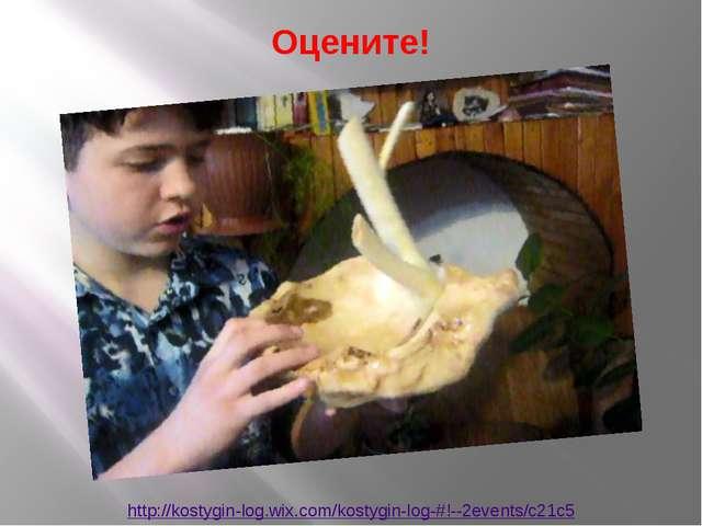 http://kostygin-log.wix.com/kostygin-log-#!--2events/c21c5 Оцените!