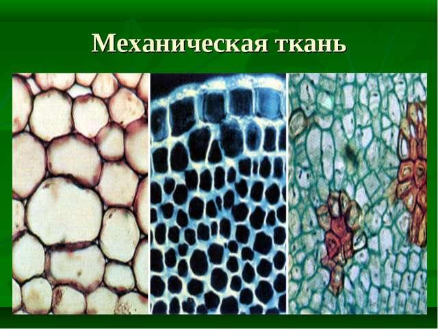 Механическая ткань