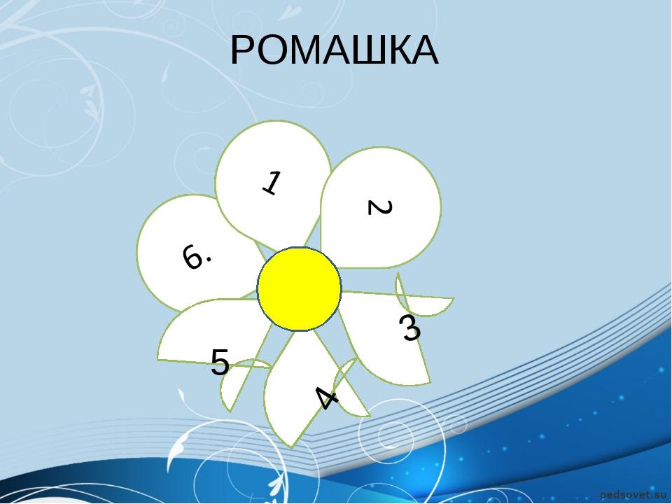 РОМАШКА 5 3 4