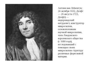 Антони ван Ле́венгук; 24 октября 1632, Делфт — 26 августа 1723, Делфт) — ниде