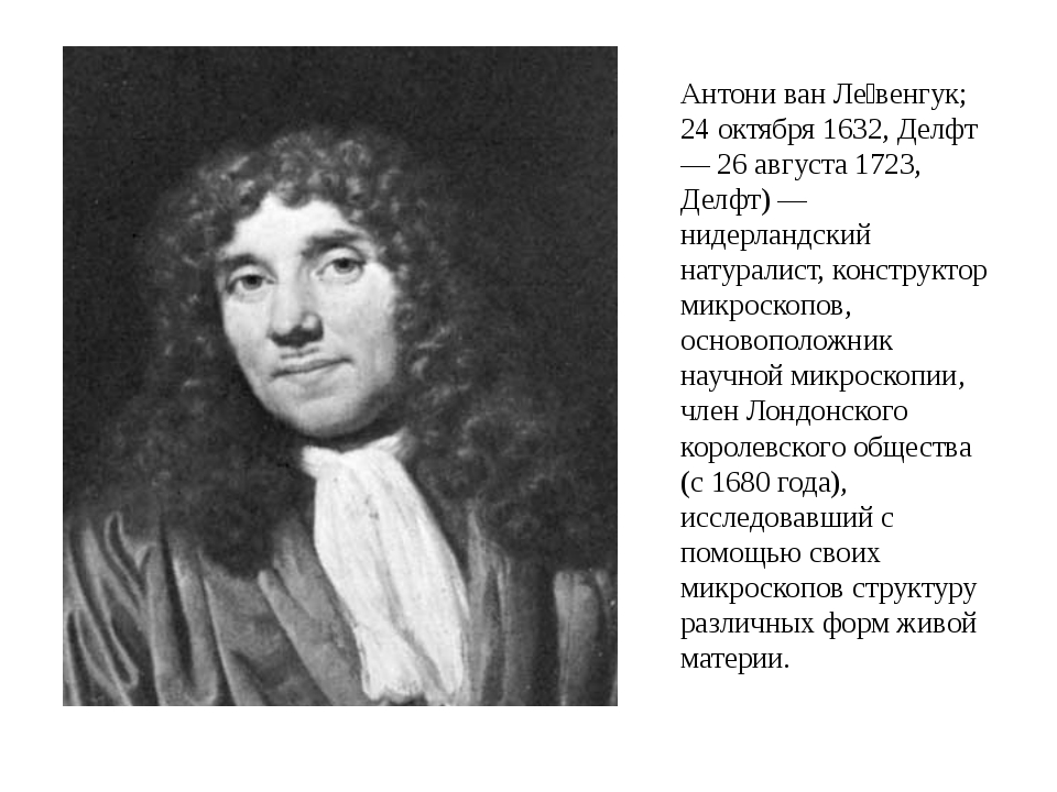 Антони ван Ле́венгук; 24 октября 1632, Делфт — 26 августа 1723, Делфт) — ниде...