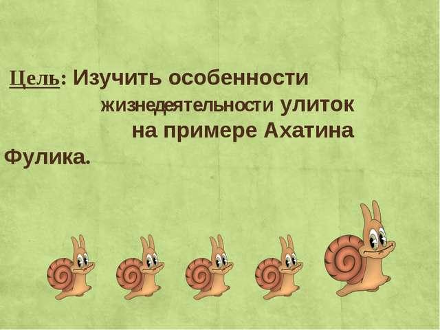 Цель: Изучить особенности жизнедеятельности улиток на примере Ахатина Фулика.