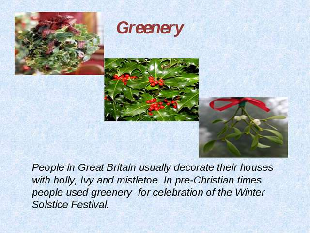 Greenery People in Great Britain usually decorate their houses with holly, Iv...
