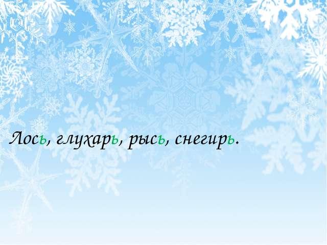 Лось, глухарь, рысь, снегирь.