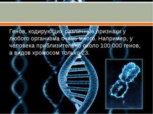 Генов, кодирующих различные признаки у любого организма очень много. Наприме
