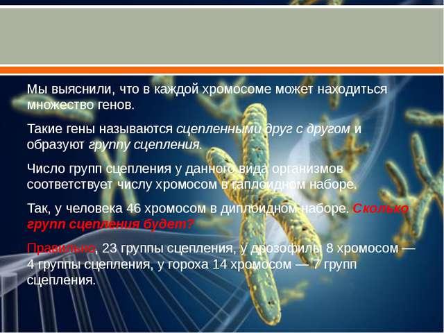 Мы выяснили, что в каждой хромосоме может находиться множество генов. Такие...