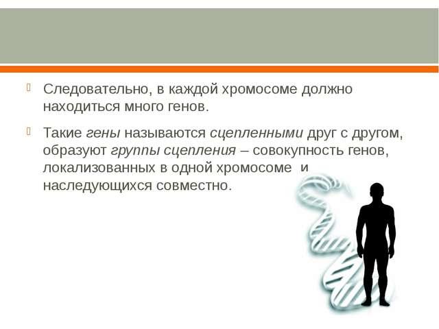 Следовательно, в каждой хромосоме должно находиться много генов. Такие гены...