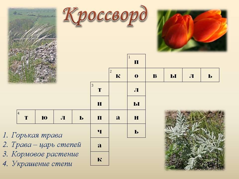 C:\Documents and Settings\1\Рабочий стол\степь и растения с животными\cтепь 10.JPG