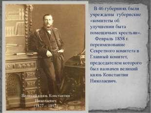 В 46 губерниях были учреждены губернские «комитеты об улучшении быта помещич