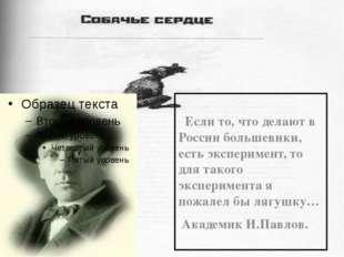 Если то, что делают в России большевики, есть эксперимент, то для такого экс