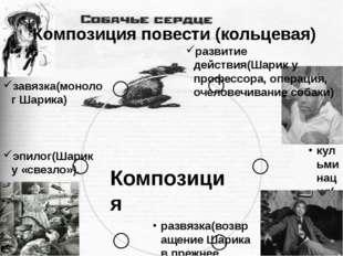 Композиция повести (кольцевая) завязка(монолог Шарика) развитие действия(Шар