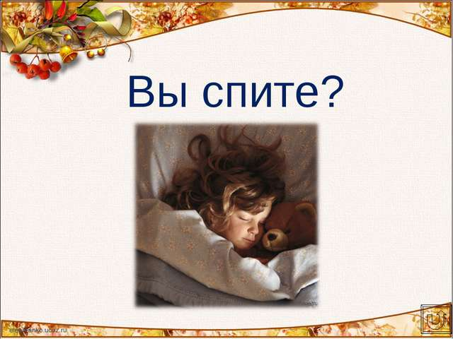 Вы спите?