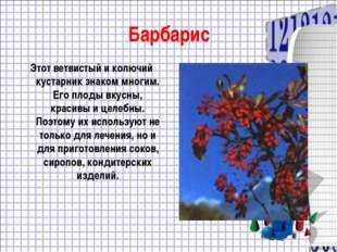 Барбарис Этот ветвистый и колючий кустарник знаком многим. Его плоды вкусны,