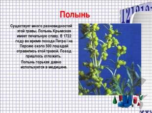 Полынь Существует много разновидностей этой травы. Полынь Крымская имеет печа