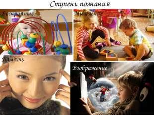 Восприятие Память Мышление Воображение Ступени познания