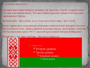 Красный цвет символизирует кровные узы, братство, борьбу за правое дело, это