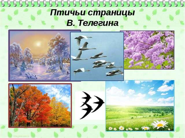 Птичьи страницы В. Телегина