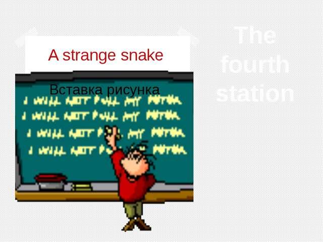A strange snake The fourth station
