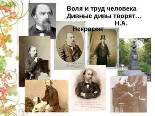 Воля и труд человека Дивные дивы творят… Н.А. Некрасов