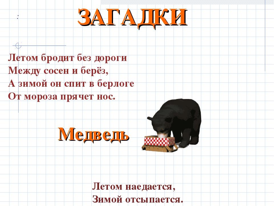 : Летом бродит без дороги Между сосен и берёз, А зимой он спит в берлоге От м...