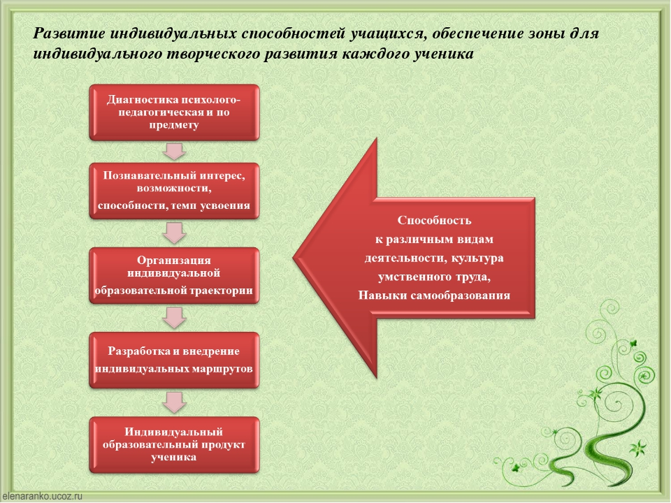 Развитие индивидуальных способностей учащихся, обеспечение зоны для индивидуа...