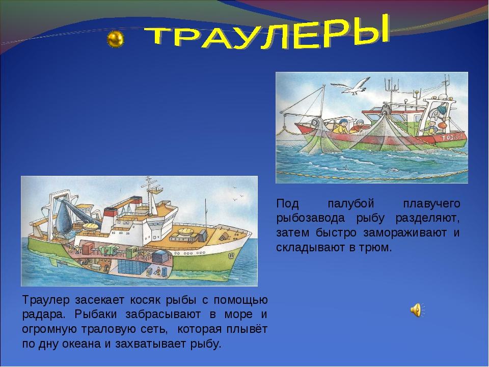 Траулер засекает косяк рыбы с помощью радара. Рыбаки забрасывают в море и огр...