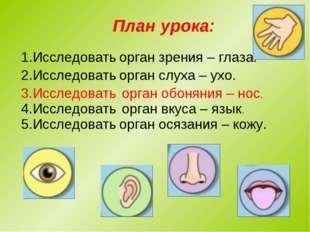 План урока: 1.Исследовать орган зрения – глаза. 2.Исследовать орган обоняния