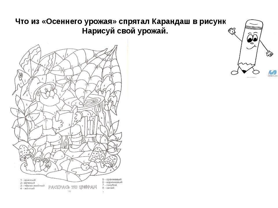Что из «Осеннего урожая» спрятал Карандаш в рисунке? Нарисуй свой урожай.