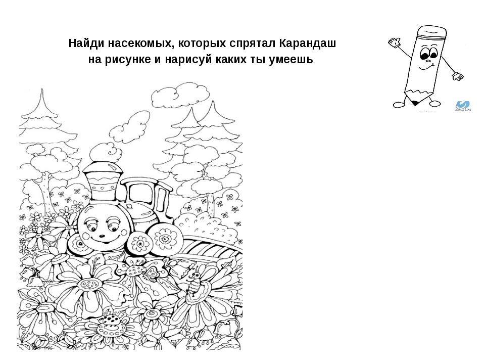 Найди насекомых, которых спрятал Карандаш на рисунке и нарисуй каких ты умеешь