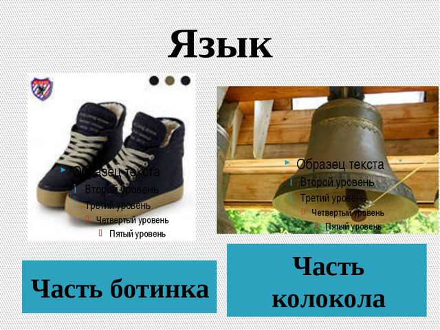 Язык Часть ботинка Часть колокола