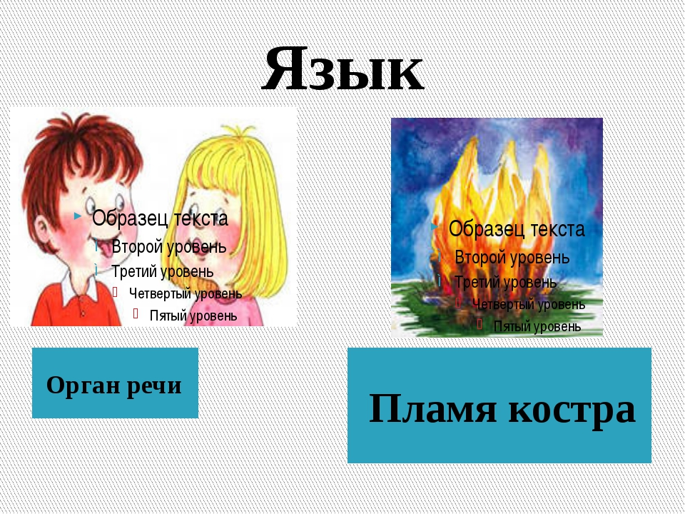 Язык Орган речи Пламя костра