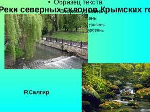 Реки северных склонов Крымских гор Р.Салгир Р.Салгир