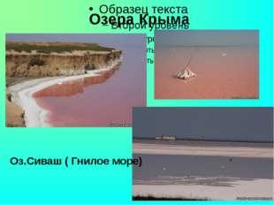 Озера Крыма Оз.Сиваш ( Гнилое море)