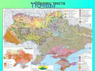 Почвы Крыма