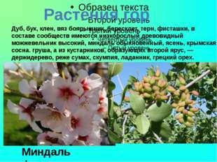 Растения гор Дуб, бук, клен, вяз боярышник, бересклет, терн, фисташки, в сос