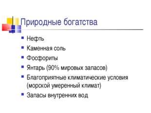 Природные богатства Нефть Каменная соль Фосфориты Янтарь (90% мировых запасов