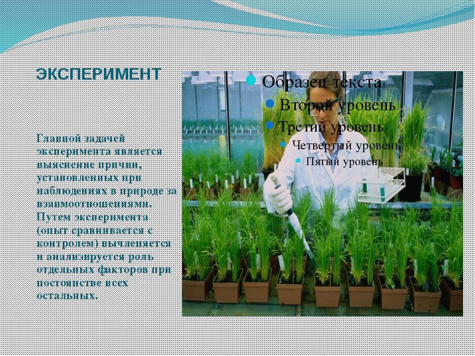 ЭКСПЕРИМЕНТ Главной задачей эксперимента является выяснение причин, установле...