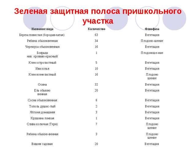 Зеленая защитная полоса пришкольного участка Название видаКоличествоФенофаз...