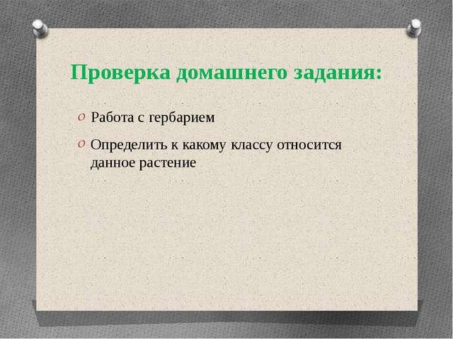 Проверка домашнего задания: Работа с гербарием Определить к какому классу отн...
