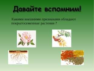 Какими внешними признаками обладают покрытосеменные растения ?
