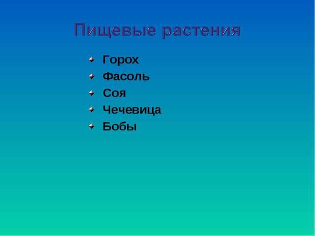 Горох Фасоль Соя Чечевица Бобы