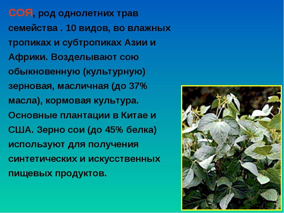 СОЯ, род однолетних трав семейства . 10 видов, во влажных тропиках и субтропи...
