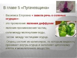 В главе 5 «Пугачевщина» Василиса Егоровна « завела речь о соленых огурцах»- э