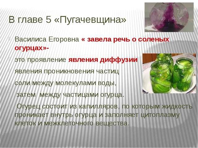 В главе 5 «Пугачевщина» Василиса Егоровна « завела речь о соленых огурцах»- э...