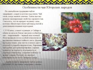 Особенности чая Югорских народов По хантыйским традициям чай не заваривают, а